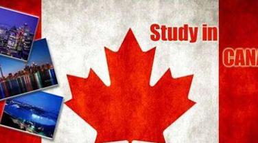 加拿大就业前景最好的几大专