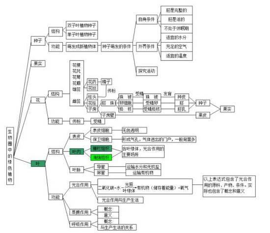 中考生物知识点分类结构图-2